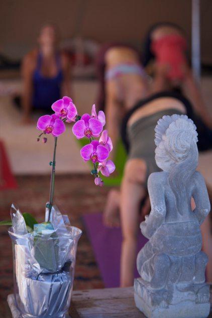 Orchid yoga floor